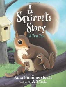A Squirrels Story
